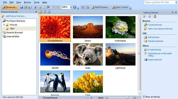 picture manager 1